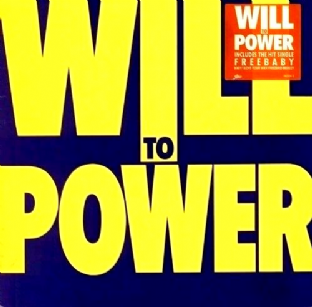 Will To Power - Will To Power (LP) (G+/G+)